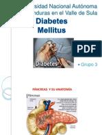 Diabetes Fisiopato II