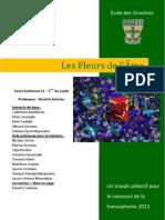 LES FLEURS DE L'ÂME PARTICIPATION 2013