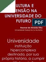USP Interdisciplinaridade 2013