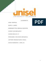 Bernouli lab report