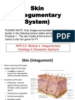 3BIO 261 Skin Lecture_SP 2011