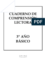 CUADERNILLO DE COMPRENSION LECTORA
