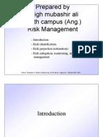 121348459-risk-management.pdf