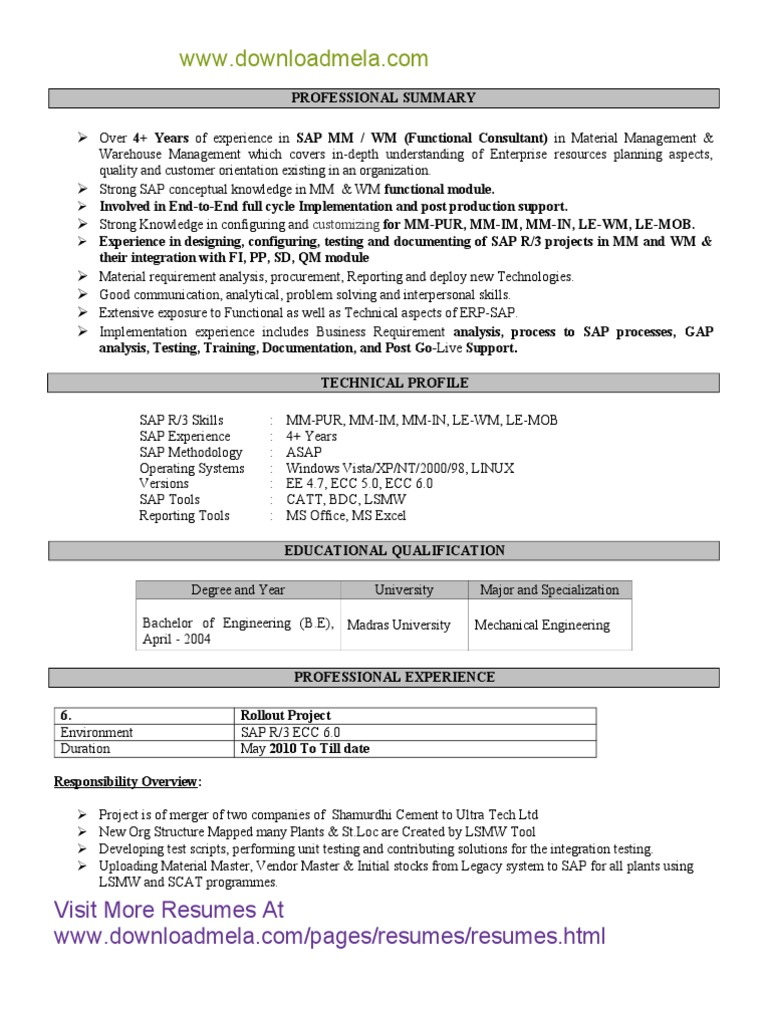 Sap Sd Mm Functional Consultant Resume Pdf Sap Se