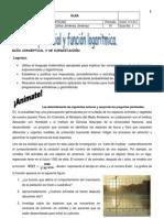 GUÍA IV PERIODO MATH 9° 2012-2013 - BLOG