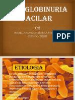 HEMOGLOBINURIA BACILAR