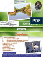 Delta Dunarii2007