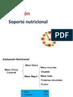 4 - nutricion