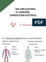 El Corazón.Circulación.Sistema de conducción eléctrica 2011 (1)
