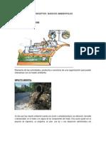 Conceptos Basicos Ambientales Ruc