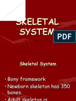 skeletalhste2