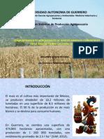 Presentación_Foro
