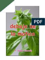 Daniel Albarrán, Debajo de la matica (Novela)