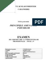 PRINCIPIILE AMENAJARII PADURILOR