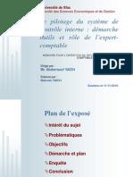 LE PILOTAGE DU SYSTEME DE CONTROLE INTERNE  DEMARCHE, OUTILS ET ROLE DE L'EXPERT-COMPTABLE