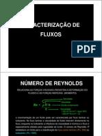 Caract de Fluxos II