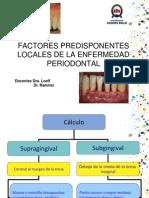 Trabajo Factores Locales Predisponentes de La EP Final