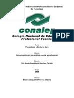 PROYECTO DE LITERATURA-AURA.docx