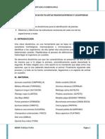 Claves Dicotomicas en Plantas Magnoliopsidas y Liliopsidas