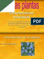 lasplantas-090528121150-phpapp01