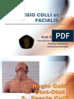 Regio Colli Et Facialis i