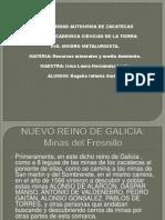 Nuevo Reino de Galicia