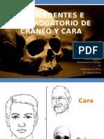 ANTECEDENTES E INTERROGATORIO DE CRÁNEO Y CARA