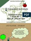51638546-TANAMAN-SAYURAN-TAHUN-6