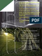 Reacciones endotérmica, exotérmicas!!! PDF