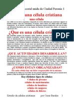 celulas cristianas