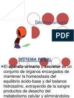 sistemarenal - copia.ppt