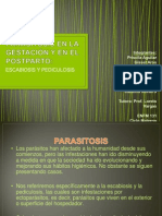 Ppt Parasitosis ENFM 131 Final