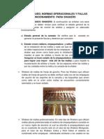 GUIA DE REVISION DE ZARANDAS.pdf