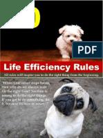 10 Life Efficiency Rules