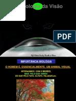 1. óptica visão 2012 NOVA