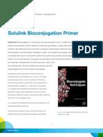 How to Bioconjugate-- Read Solulink's Bioconjugation Primer