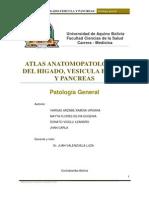 PRESENTACION DEL ATLAS DEL HIGADO, VESICULA BILIAR,PANCREAS.pdf