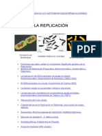 Microbiologia Experimento y Duplicacion