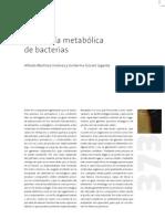 Ingenieria Metabolica de Bacterias