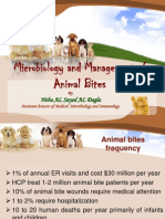 Microbiology and Management of ANIMAL BITES