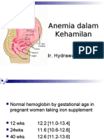 Anemia Dalam Kehamilan