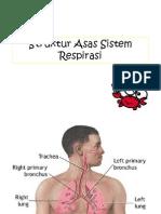 Sistem Respiratori