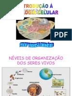 Introduo Biologia Celular Www Unifev Edu Br