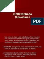Lip Oxigen Aza