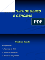 Estrutura Genes Genomas