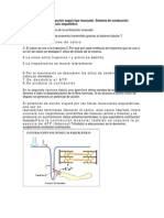 Mecanismo de la contracción según tipo muscular e infarto al miocardio