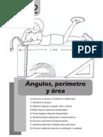 Matematica 5to - Unidad 2 - Angulos, Perimetro y Area