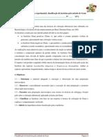 Protocolo Experimental Tecnica de Gram