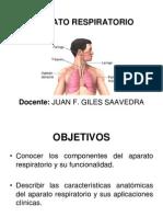 Aparato Respiratorio - Vias Aereas Inferiores