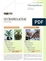 LE CRASSULACEAE 2°